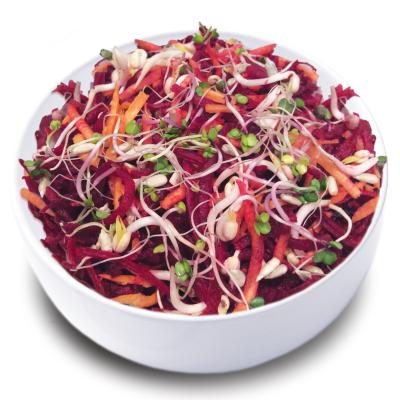 Кенар салата цвекло моркови кълнове  кг